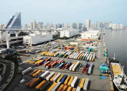 export business image