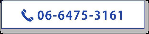 0664753161
